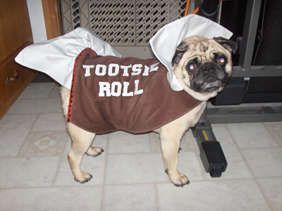 Diesel the Tootsie Roll