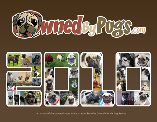 2010 Owned by Pugs Calendar