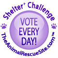The Animal Rescue Site 100,000 Shelter Challenge