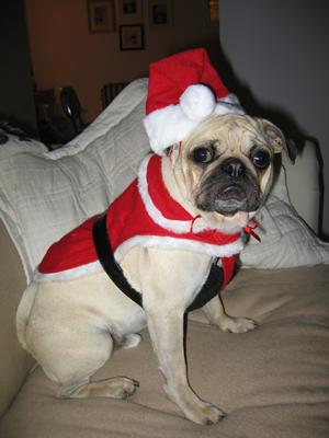 Benjamin as Santa
