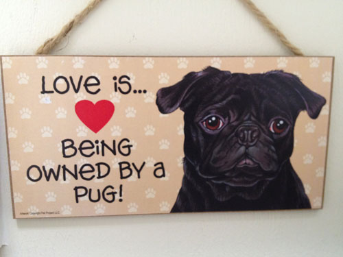 Love is Being Owned by a Pug
