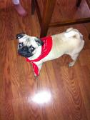 Me & my red bandana!