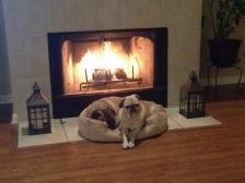 Bailey and Sampson