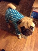 Sam's new pjs!