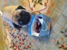 Presents for me??