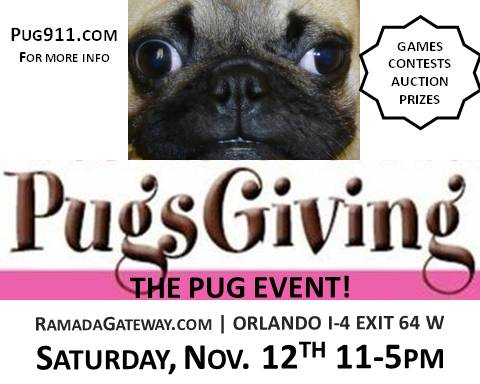 Pug Rescue of Florida's 9th Annual PugsGiving