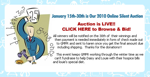 GMPR Online Silent Auction